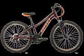 Велосипед ASPECT ANGEL 24