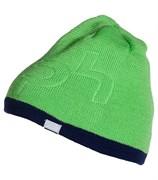 Мужская шапка Phenix Shade YG